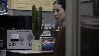 conversation-with-a-cactus-film-image