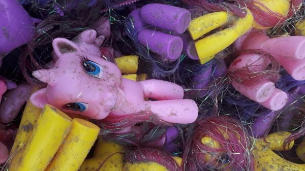 My Little Ponies op Terschelling. Foto: Herman van Vuren